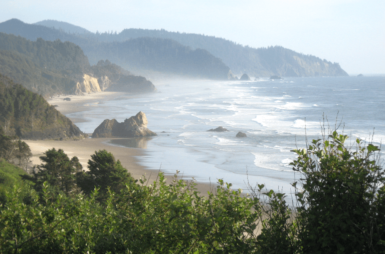 A misty day on the Oregon Coast