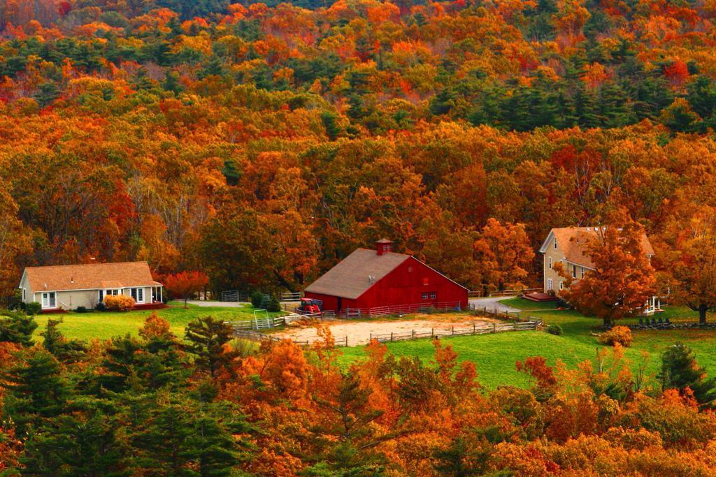 Autumn splendour on a Massachusetts Farm