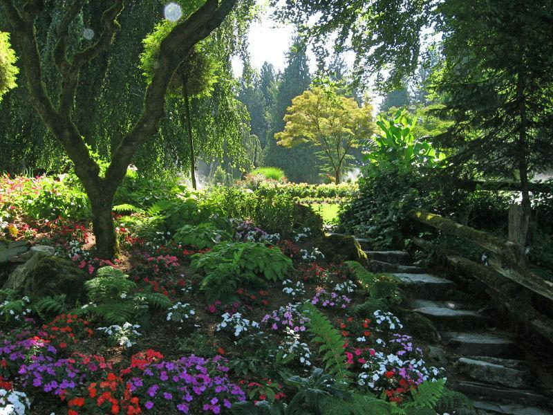 Paradise at Minter Gardens in Chilliwack BC